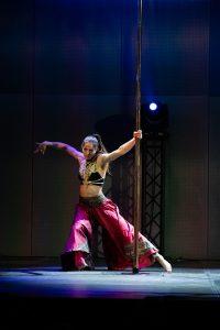 Pole Dance show-18