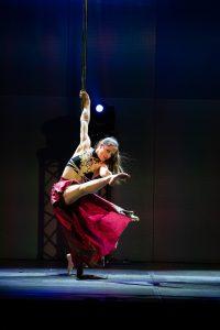 Pole Dance show-20