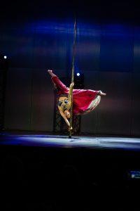 Pole Dance show-22
